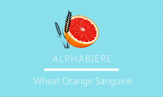 Recette 19 litres American Wheat Beer Orange Sanguine